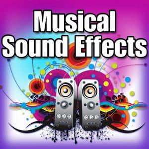 Captain Audio - Concert Bass Drum: Single Hit