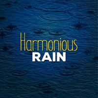 Harmonious Rain — Rain Sounds for Meditation
