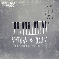 Synths and Notes 21 — сборник
