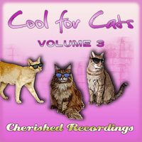 Cool For Cats Vol 3 — сборник