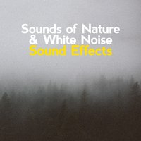 Sounds of Nature & White Noise Sound Effects — Sounds of Nature White Noise Sound Effects