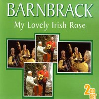 My Lovely Irish Rose — Barnbrack