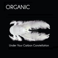 Under Your Carbon Constellation — Organic