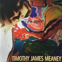 Life Again — Timothy James Meaney