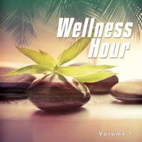 Wellness Hour, Vol. 1 — сборник