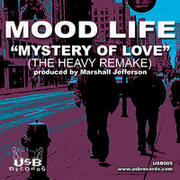 Mystery of Love — Mood Life