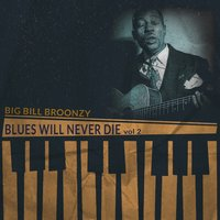Blues Will Never Die, Vol. 2 — Big Bill Broonzy