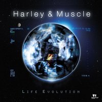 Life Evolution — Harley & Muscle