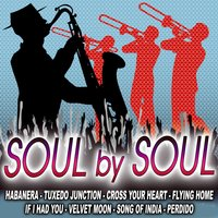 Soul With Soul — The Royal Soul Orchestra
