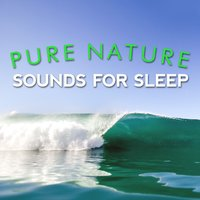 Pure Nature Sounds for Sleep — Nature Sounds for Sleep and Relaxation