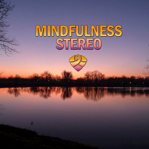 Mindfulness Stereo - Real Refreshing