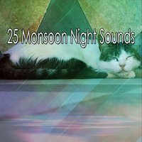 25 Monsoon Night Sounds — Thunderstorms
