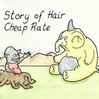 Cheap Rate — Story of Hair