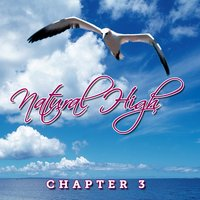 Natural High - Single — Chapter 3