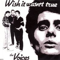 Wish It Wasn't True — The Voices
