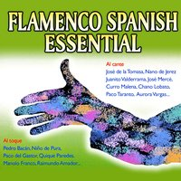Flamenco Spanish Essential — сборник