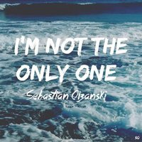 I'm Not the Only One — Sebastian Olzanski