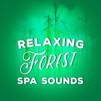 Relaxing Forest Spa Sounds — Ambient Nature Sounds, Best Nature Sounds for Relaxing, Forest Sounds Relaxing Spa Music Singing Birds, Ambient Nature Sounds|Best Nature Sounds for Relaxing|Forest Sounds Relaxing Spa Music Singing Birds