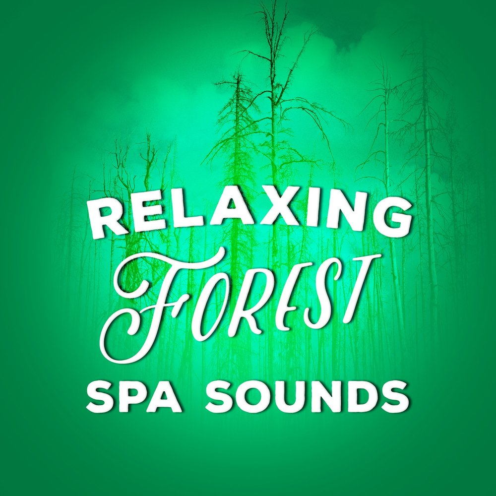 Relaxing Forest Spa Sounds — Ambient Nature Sounds, Forest Sounds