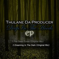Deep In The Hoods — Thulane Da Producer