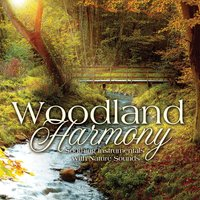 Woodland Harmony — Steve Wingfield, Howard Bear