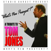 What's Up Pussycat A Tribute To Tom Jones — Studio Sunset