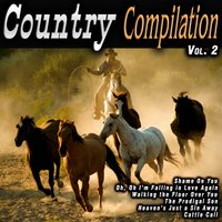 Country Compilation Vol. 2 — сборник