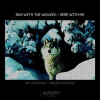 Run With The Wolves / Here With Me — B1t Crunch3r
