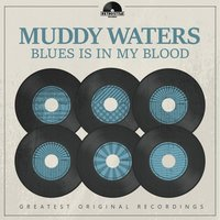 Blues Is in My Blood — Muddy Waters