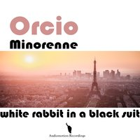 White Rabit in a Black Suit — Orcio Minorenne