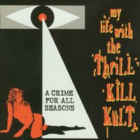 A Crime For All Seasons — My Life With The Thrill Kill Kult