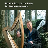 The Wood of Morois (Celtic Harp) — Patrick Ball
