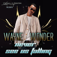 Never See Us Falling — Wayne Wonder