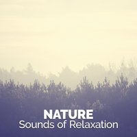 Nature: Sounds of Relaxation — Sounds of Nature Relaxation