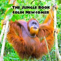 The Jungle Book — Colin Newcomer