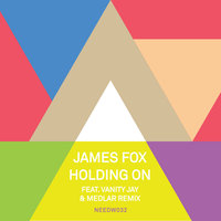 Holding On (feat. Vanity Jay) — James Fox