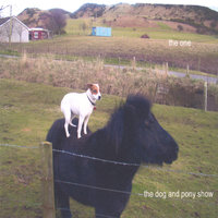the dog and pony show — The One