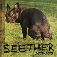 Seether: 2002 - 2013 — Seether