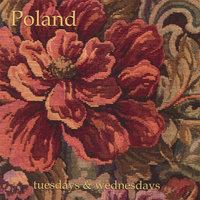 Tuesdays & Wednesdays — Poland