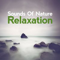Sounds of Natural Relaxation — Sounds of Nature Relaxation
