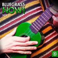 Bluegrass Now!, Vol. 2 — сборник