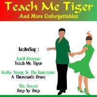Teach Me Tiger and More Unforgettables — Joe Tex