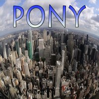 Pony (Jump On It) - Tribute to Tough Love and Ginuwine — Propa Charts