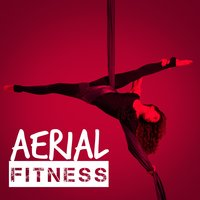 Aerial Fitness — The Cardio Workout Crew