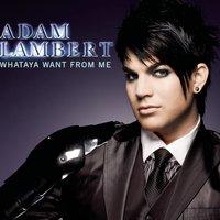 скачать альбом adam lambert broken