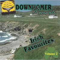 Downhome Irish Favourites, Vol. 2 — сборник