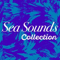 Sea Sounds Collection — Ocean Sounds Collection