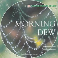 Nature Atmosphere: Morning Dew — Nicolas Jeandot
