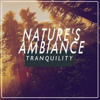 Nature's Ambiance: Tranquility — Ambiance Nature, Tranquil Music Sounds of Nature, Ambiance nature|Tranquil Music Sounds of Nature