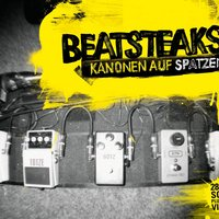 KANONEN AUF SPATZEN - 28 Live Songs plus Videos — Beatsteaks